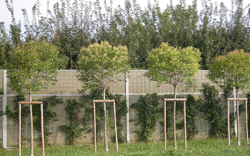 opere di urbanizzazione per la sostenibilità Treviso