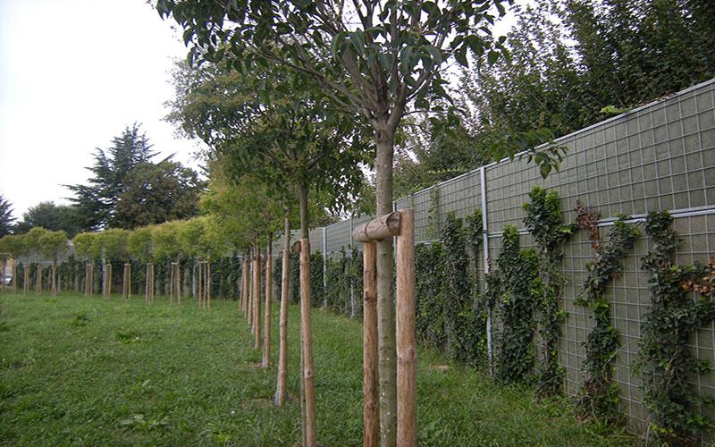 opere di urbanizzazione per la sostenibilità a Treviso